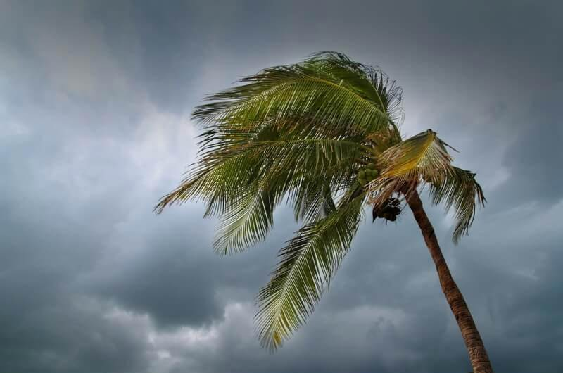 How to prepare for hurricane or tropical storm