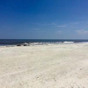 Jekyll Island Beach, Georgia Golden Isles - Coastal Wandering