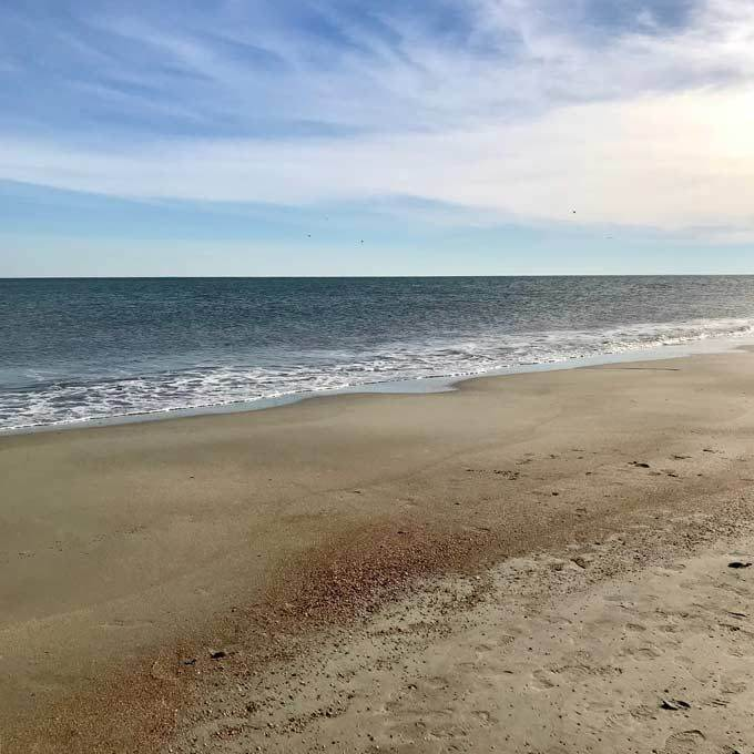 Hilton Head Beach Guide: What You Need to Know