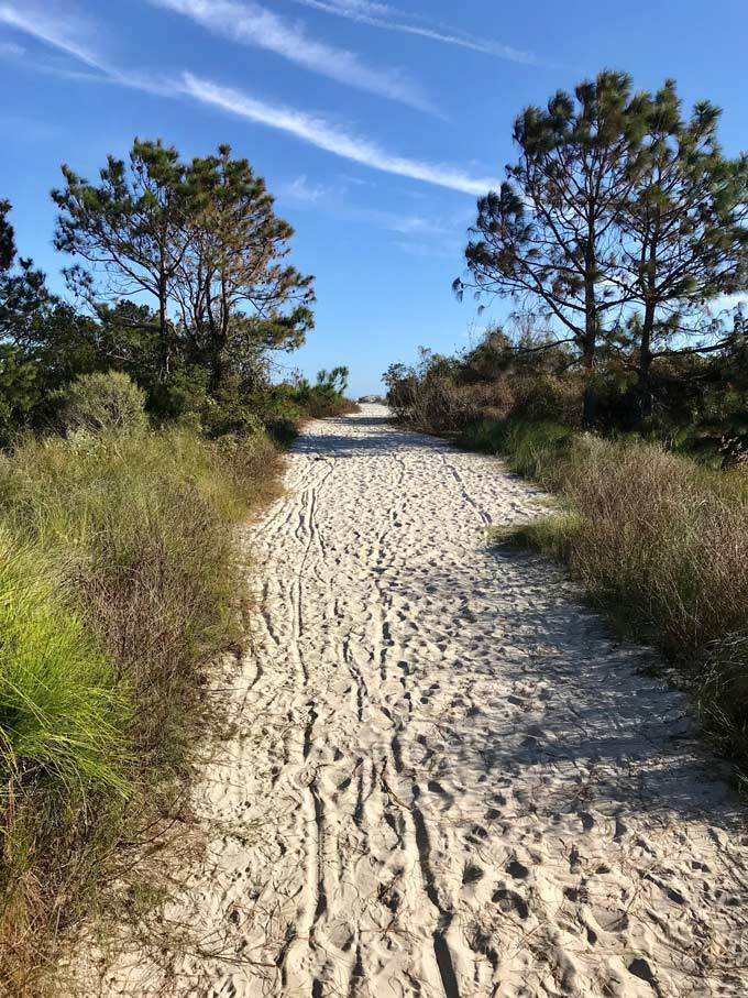 Sandy path to Burkes Beach, Hilton Head Island