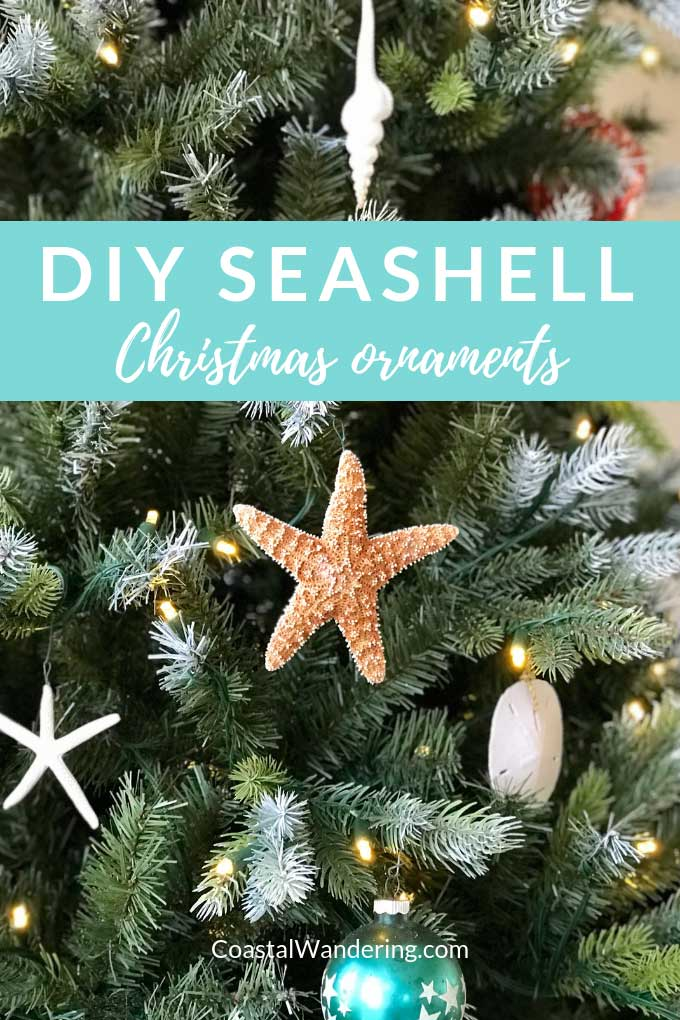 DIY Seashell Christmas ornaments - sand dollar, sea star, starfish, spindle shell