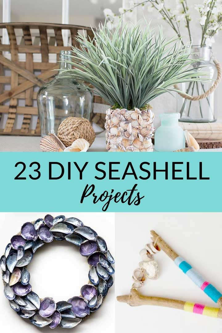 23 DIY Seashell Projects