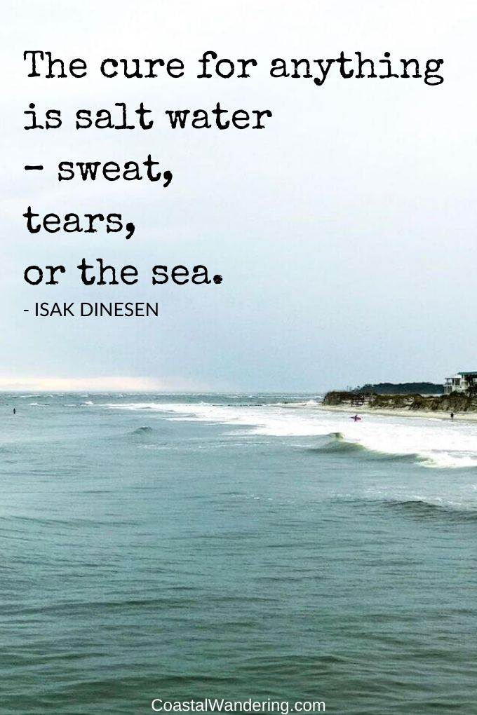 the cure for anything is salt water - sweat tears or the sea-coastal wandering